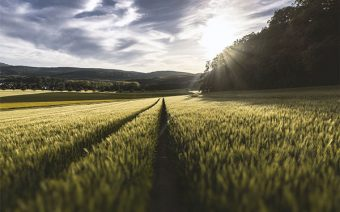 agricoltura-di-precisione-droni-guidonia-roma